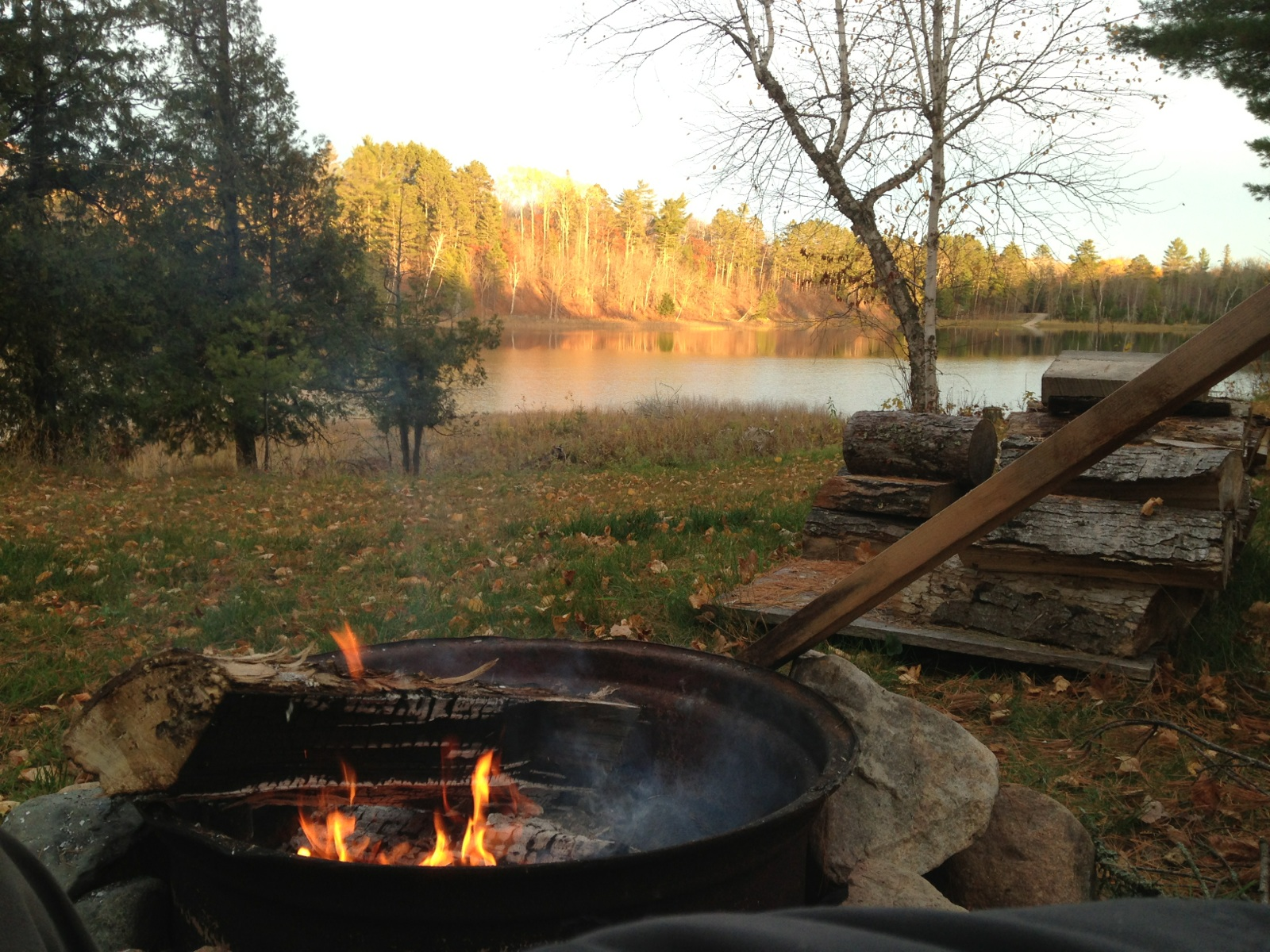 Simple Living Brats And Dogs At The Cabin Patrons Of